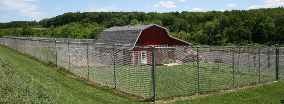 Barnyard kennels dog cat boarding and grooming facility for Red barn dog kennel